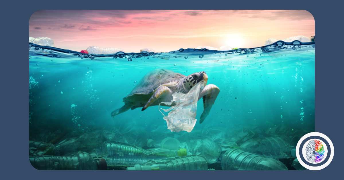 Learn about plastics in the ocean with Omnis Education